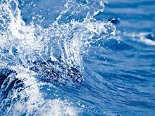 Water Desalination Operation